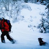 Fernie Ski Patrol, Canadian Avalanche Dog Association, Fernie Alpine Resort,